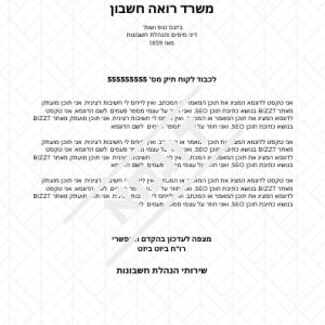 עיצוב נייר מכתבים לרואה חשבון - BIZZT